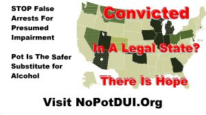 CLICK HERE to go to No Pot DUI South Bend Cannabis Liberation Day 2003